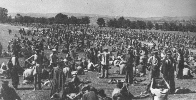 Bleiburg, svibnja 1945.