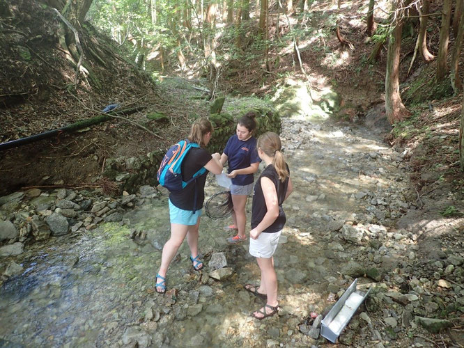 Three Bucknell Students taking water samples for eDNA analysis.