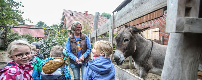 Tiere gehören zum Programm des Bauernhof-Kindergartens in Aschwarden, der mit der Gemeinde über seine künftige Finanzierung verhandelt. (Christian Kosak)