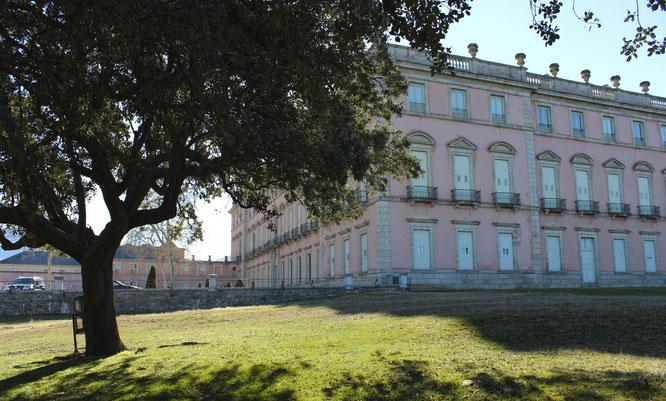 Entorno Palacio Real de Riofrío