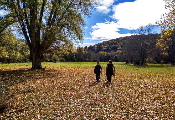 Valle del Pirón, Segovia