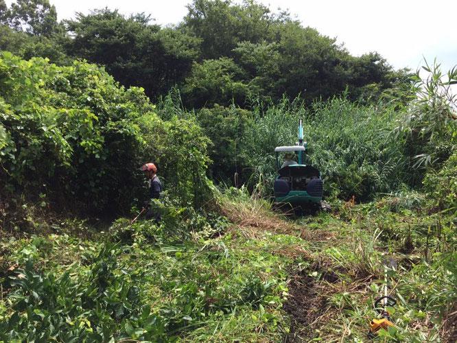 草刈りに適した機械・道具を多数取り揃えています