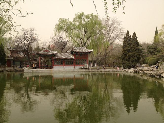 Ritan Park Beijing wie kommt man zum Ritan Park Peking schönster park freizeit peking