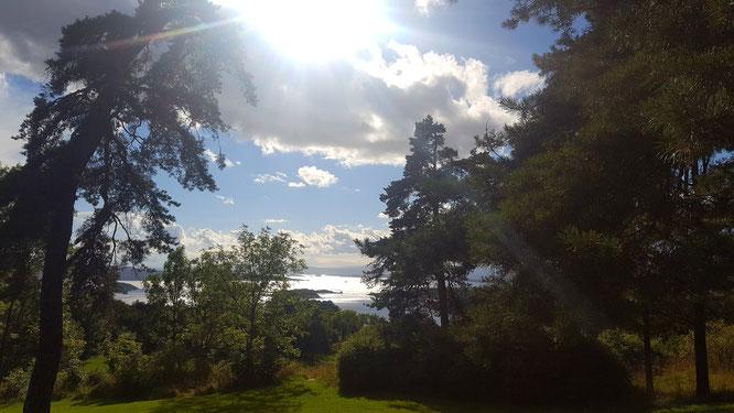 Ekebergparken: Yoga Mama MOMazing City Guide Oslo - Mareike gibt Tipps für Städtetrips und Reisen mit Kind und Baby.