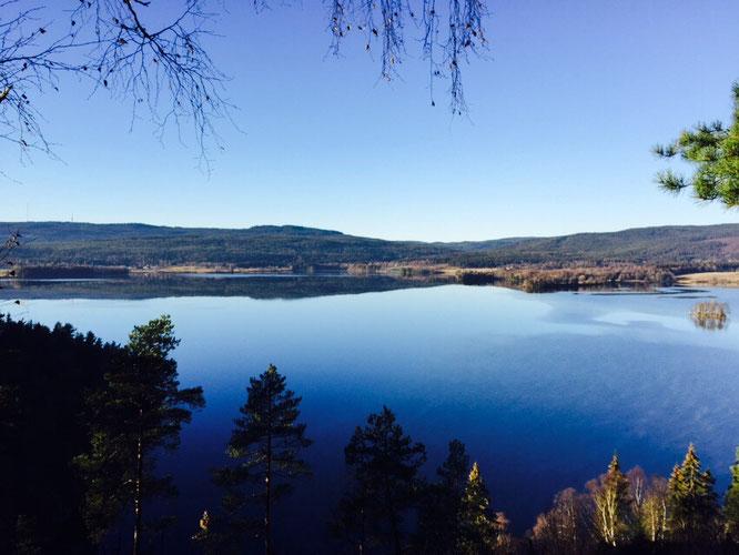 Maridalsvannet: Yoga Mama MOMazing City Guide Oslo - Mareike gibt Tipps für Städtetrips und Reisen mit Kind und Baby.
