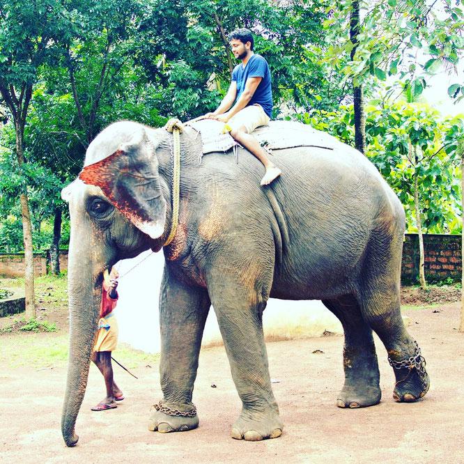 Unterwegs in Kerala: Yogalehrer und Papa Arun im Interview mit dem Mama Yoga Blog MOMazing.
