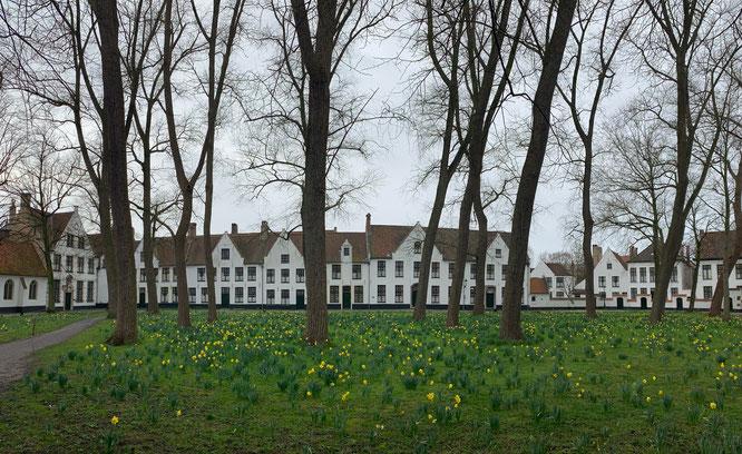 Begijnhof in Brügge