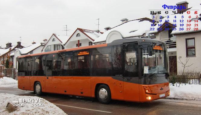 Междугородный автобус МАЗ 231062