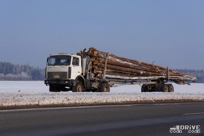 Лесовоз МАЗ-5434 с прицепом-роспуском. Трасса Москва-Брест. 18/02/2012