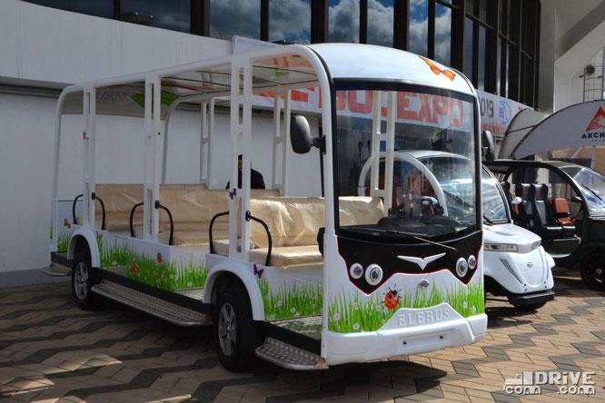 Электробус Elebus-TIGARBO S18D