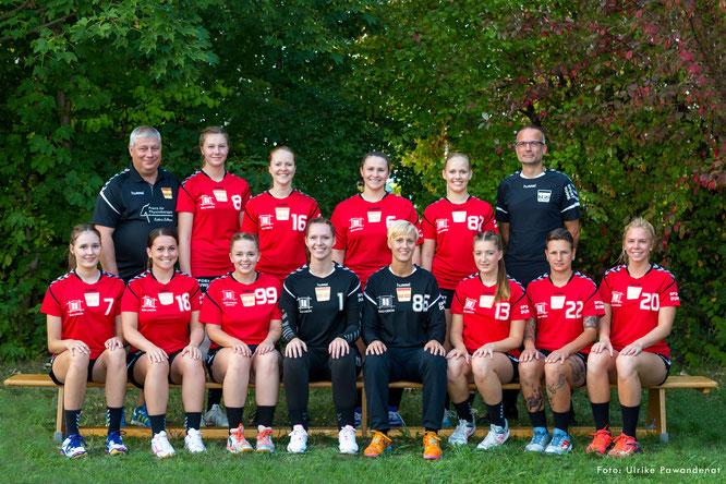 Tsg Wismar Handball Frauen