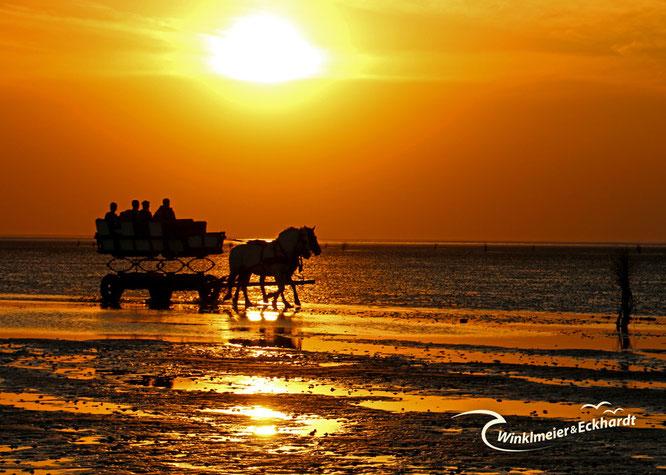 Roter Sonnenuntergang im Watt mit Wattwagen vor Cuxhaven Duhnen