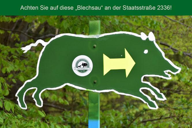 Schwarzwildgatter Altmühltal Hinweisschild Blechsau