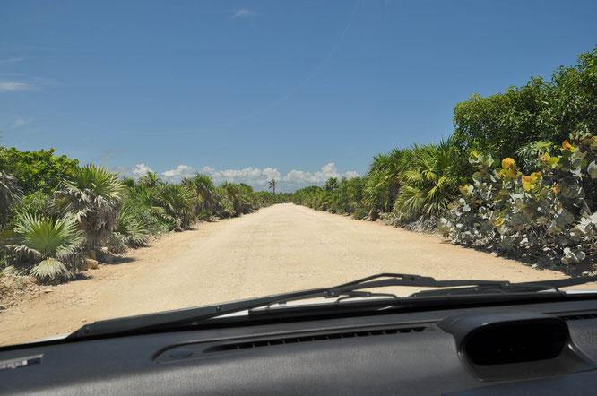 Mexiko Abenteuer Reise mit dem Auto