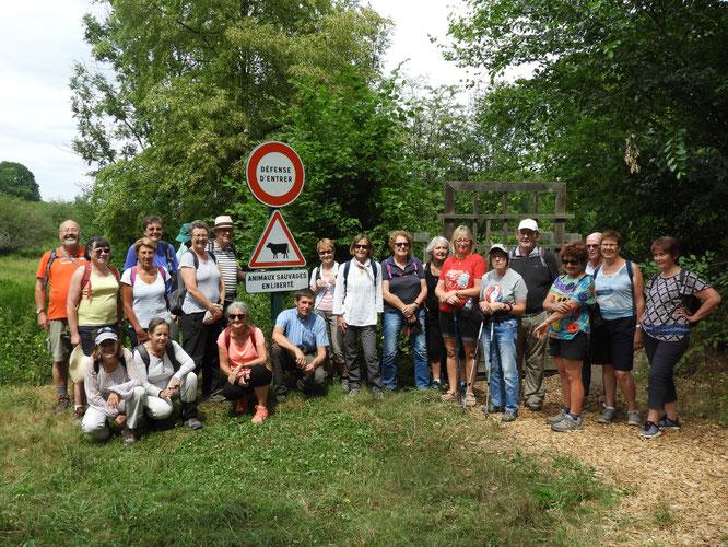 Visite des  Marais de SACY avec un guide du département de L'Oise  .  Lundi 09 juillet 2018