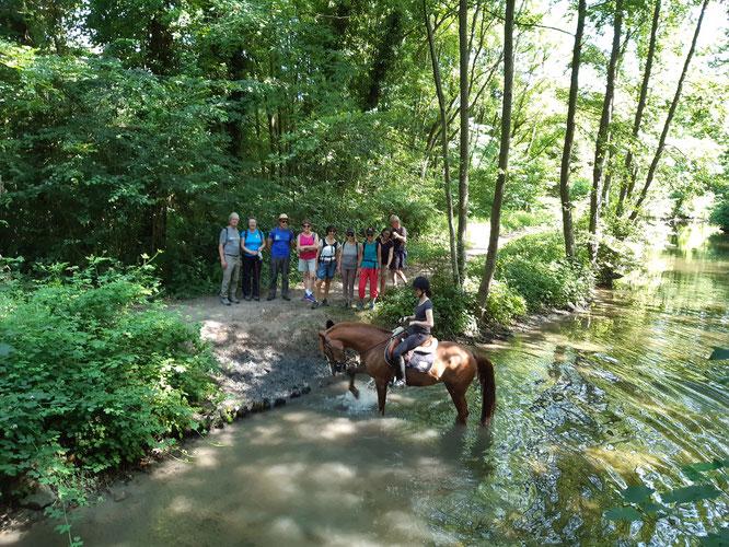 Lamorlaye le  30 juin 2019 - sur le  parcours commun  : 12 et 25 km . Rencontre avec une cavaliere  et son cheval dans La Théve.  Il faisait trés chaud.