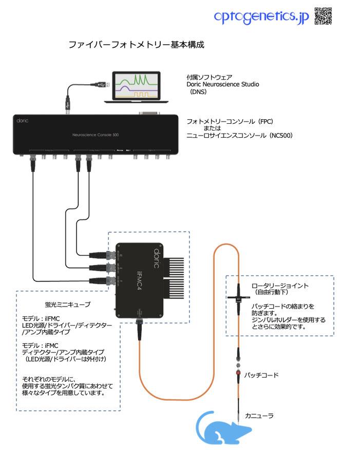 ライミス  Doric ファイバーフォトメトリーシステム
