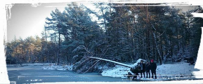 Gassigehen im Schnee mit der ganzen Familie