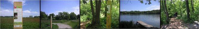 Lernpfade des Wasseramt besuchen im Wanderurlaub