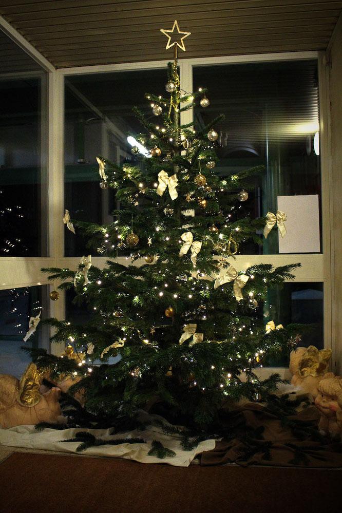 christbaum blumentraude