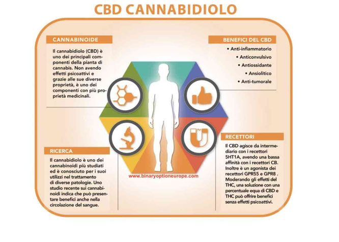 effetti benefici cannabis cannabidiolo sul corpo umano