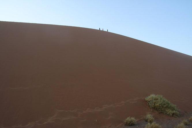 Düne Namib