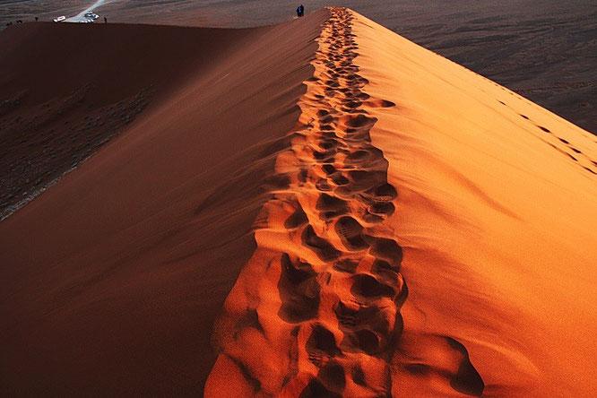Namib Düne