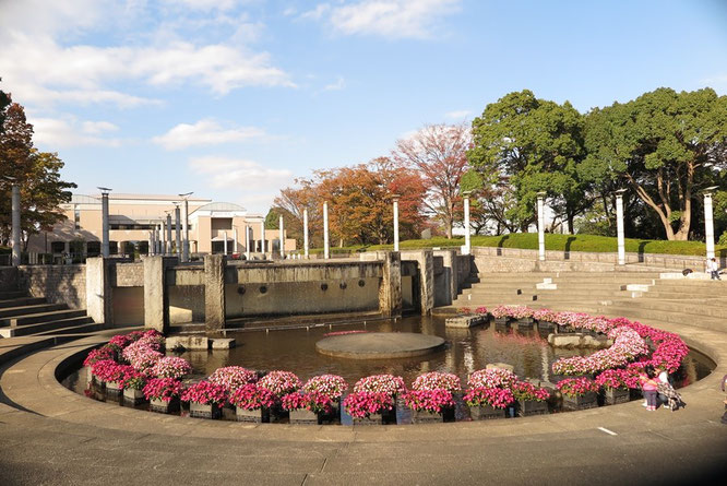 噴水広場は四季折々の花が咲きます
