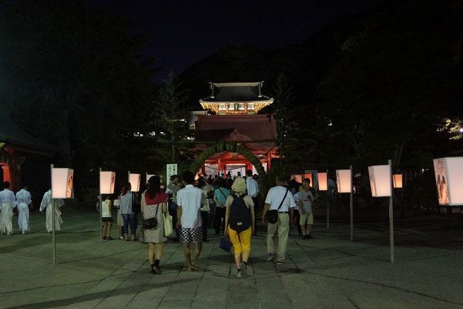 幻想的な鶴岡八幡宮