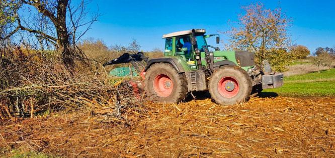 Auf dem Auersmacher Feld entfernte die Landschaftspflege-Initiative in der vergangenen Woche Verbuschungen von einem Grundstück.