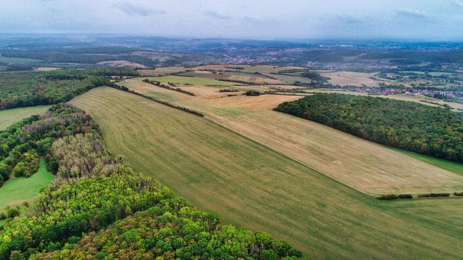 Luftaufnahme des Bürger-Solarpark-Grundstücks.