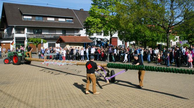 In Auersmacher wird am Dienstag zum dritten Mal der Maibaum auf dem Marktplatz aufgestellt.