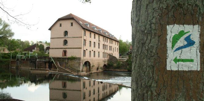 Auf dem Premium-Wanderweg in Kleinblittersdorf kann man kostenlos die Natur entdecken.