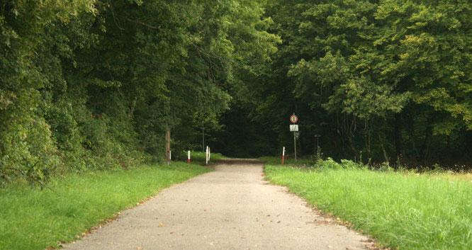 Der Waldeingang auf dem Dragoner Weg in Auersmacher.