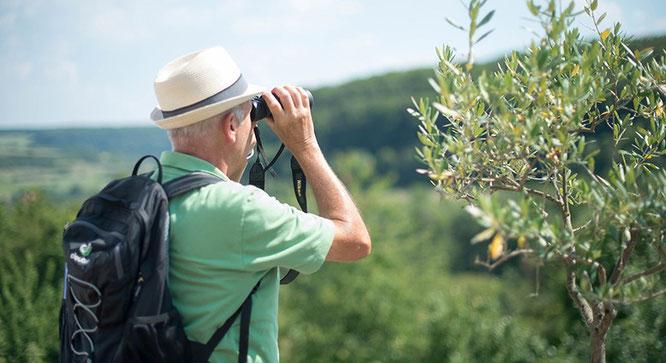Natur- und Landschaftsführungen im Biosphärenreservat Bliesgau. Saarpfalz-Touristik. Foto: Manuela-Meyer.