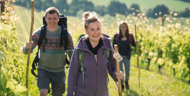 Die Volkshochschule und der Regionalverband Saarbrücken bietet in Kooperation mit Vereinen und Wanderführern 13 Themenwanderungen in den Herbst- und Wintermonaten an.