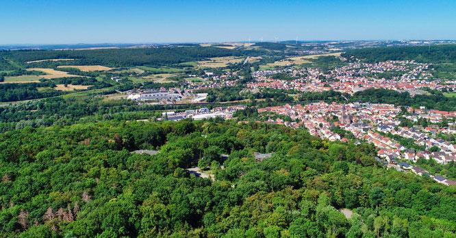 Ein Teil des Gemeindewalds in Kleinblittersdorf.
