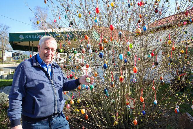 Bernhard Peter hat Rilchingen-Hanweiler 500 Eier an einen Strauch gehängt.