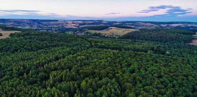 Der Wald zwischen Sitterswald und Bliesransbach.