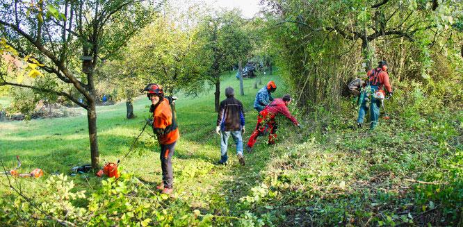 Viele machen mit, wie hier beim Freiwilligeneinsatz, andere möchten sich noch anschließen – die Biosphäre Bliesgau bietet viele Beteiligungsmöglichkeiten.