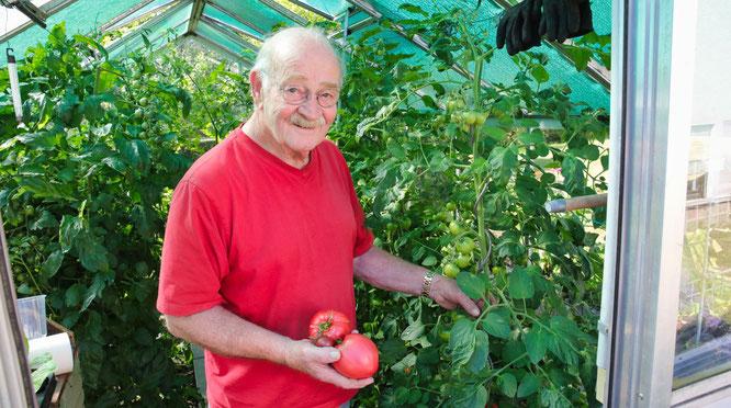 Egon Steffensky ist zweiter Vorsitzender im Obst- und Gartenbauverein Bliesransbach und ein ausgesprochener Tomatenexperte.