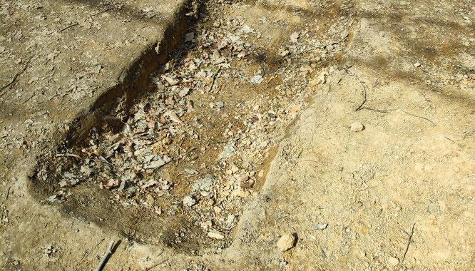 Auf einem Wanderweg hinter dem Sitterswalder Waldhaus haben Unbekannte eine Grube ausgehoben.