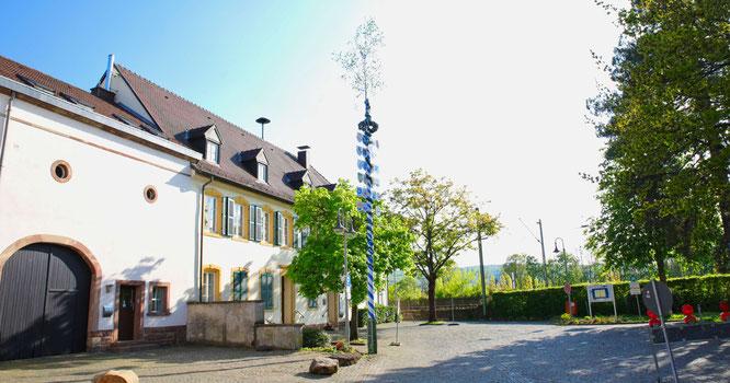 Kleinblittersdorfer Ortsvereine stellten den Maibaum vor dem Historischen Rathaus auf.