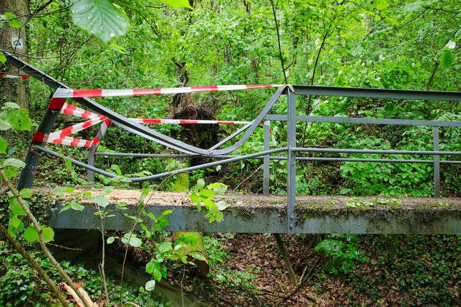 Ein umgestürzter Baum hat das Brückengeländer deutlich zerstört. Zum Glück befanden sich zu diesem Zeitpunkt keine Wanderer auf der Brücke.