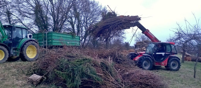 Mit schwerem Gerät wurde das Holz auf das Auersmacher Feld geschafft.