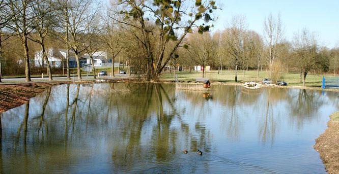 Die Teichanlage in der Bemelswies soll den Namen Robert-Jeanrond-Park erhalten.