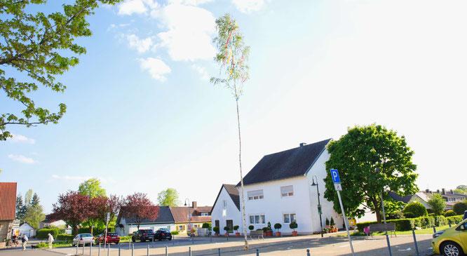 Der Maibaum in Sitterswald wurde am Dienstag von der Feuerwehr aufgestellt.