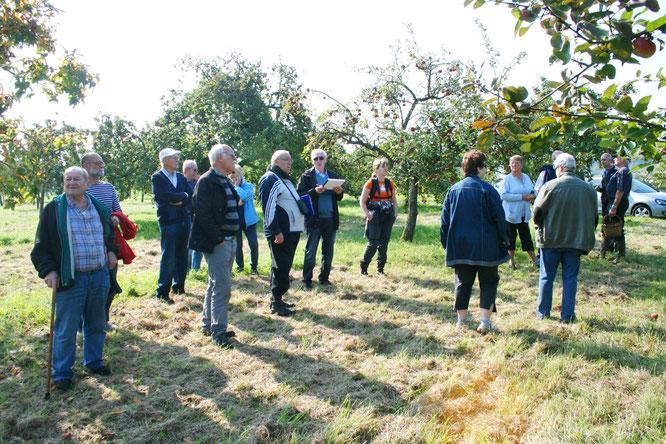 Die Obstversteigerung ist seit Jahren ein Höhepunkt in Bliesransbach. Dieses Bild stammt aus dem Jahr 2017.