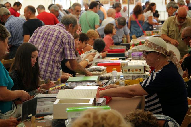 Feria Replega Monzon