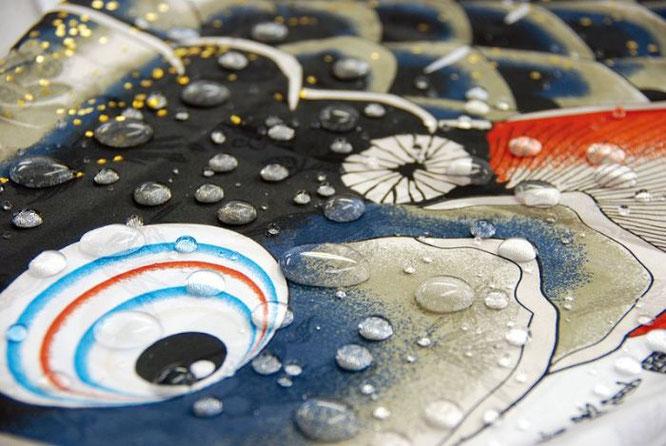 鯉のぼり 吉兆 撥水イメージ